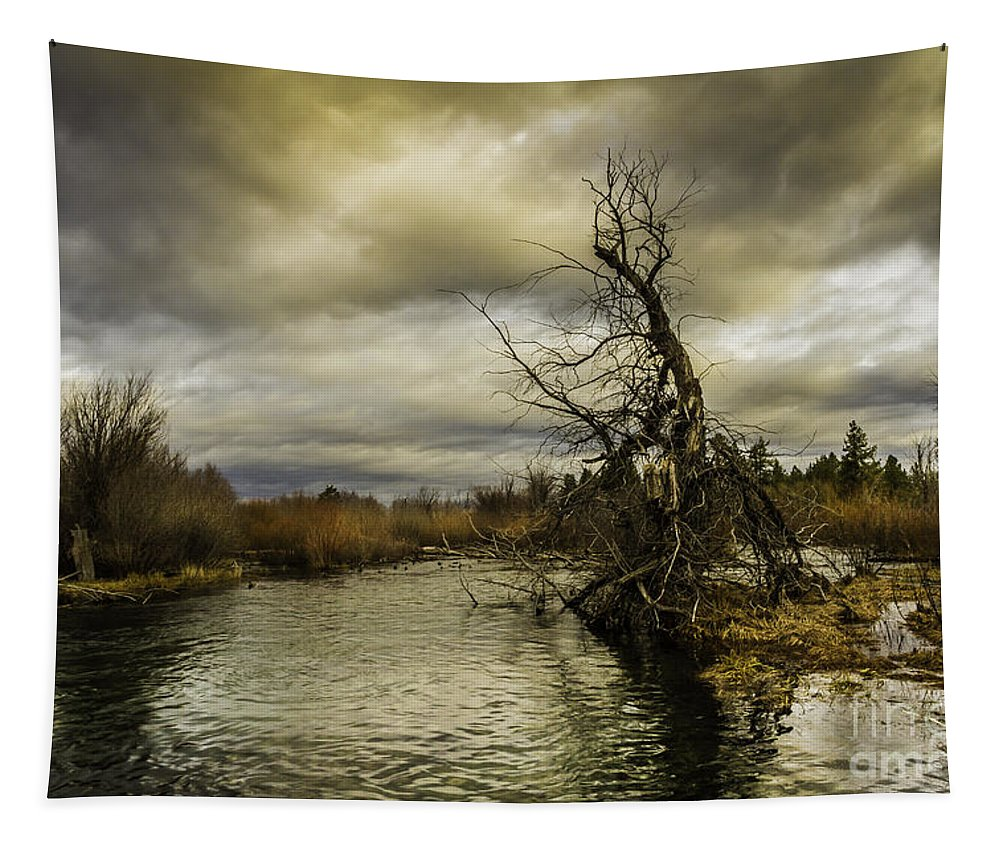 Autumn Winds Tapestry featuring the photograph Autumn Winds by Mitch Shindelbower