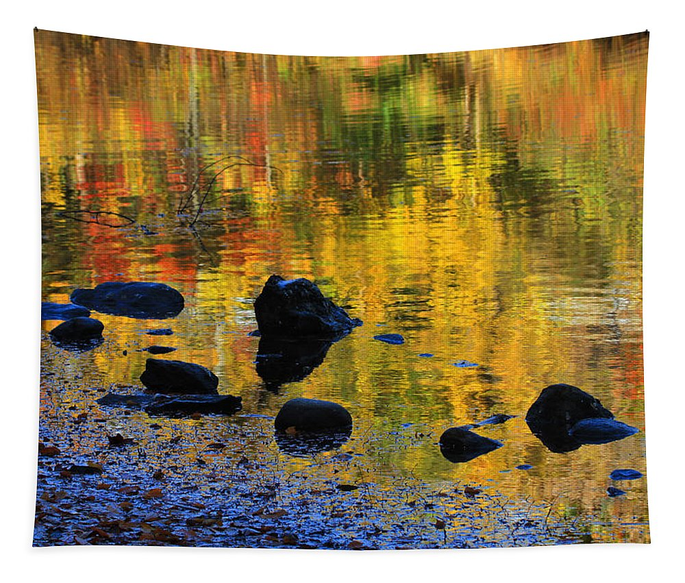 Autumn Tapestry featuring the photograph Autumns Rainbow by Karol Livote