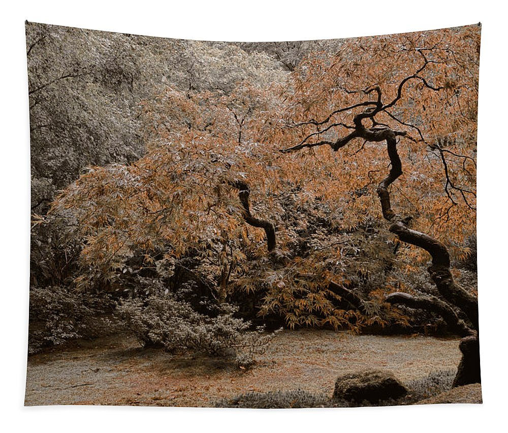 Asian Tapestry featuring the photograph Autumn's Touch by Don Schwartz