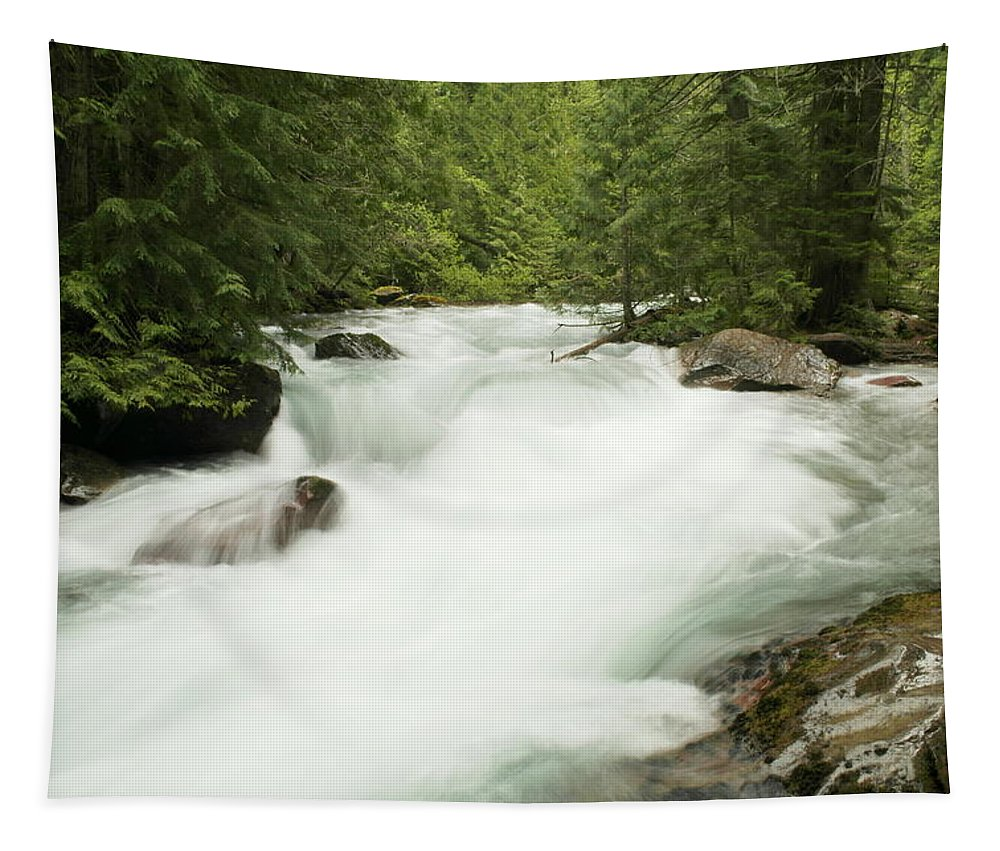 Rivers Tapestry featuring the photograph Avalanche Creek In Spring Run Off by Jeff Swan