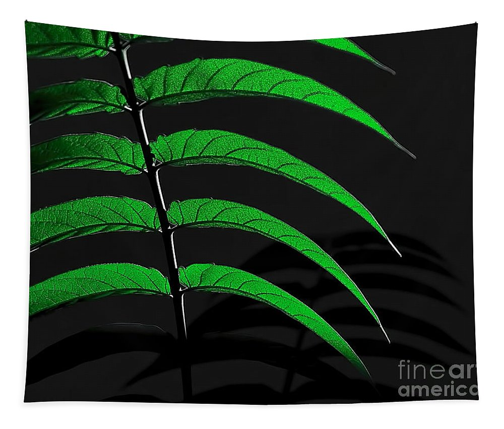 Digital Color Photo Tapestry featuring the digital art Backyard Abstract by Tim Richards
