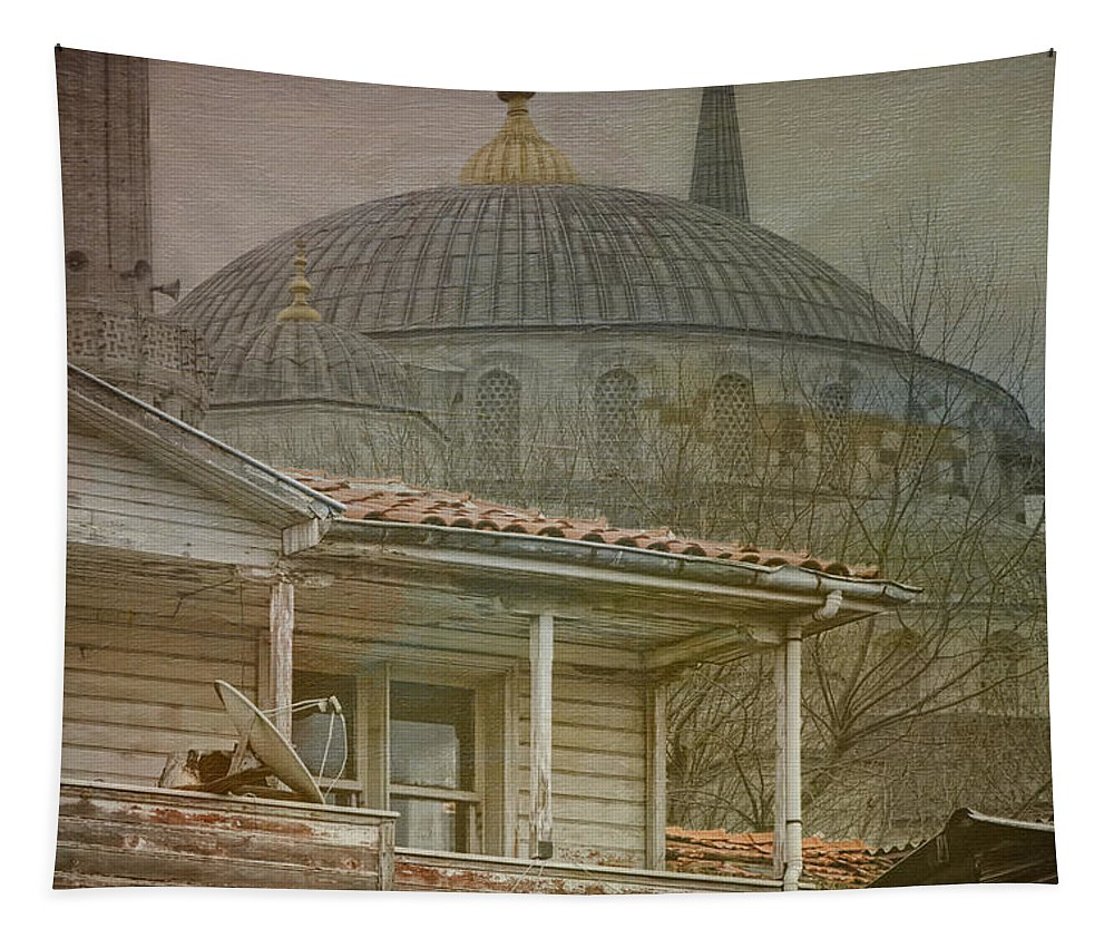 Blue Mosque Tapestry featuring the photograph Backyard Splendor by Joan Carroll