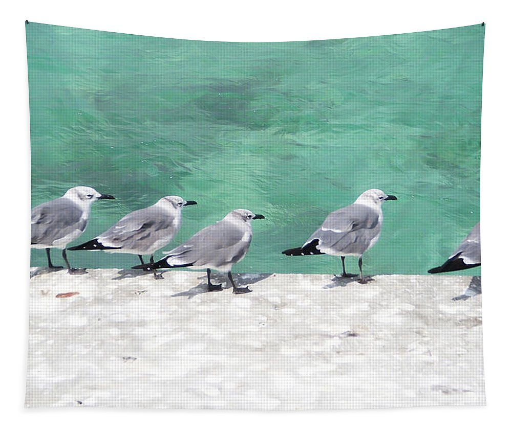 Bird Tapestry featuring the photograph Bahama Birds by Aimee L Maher ALM GALLERY