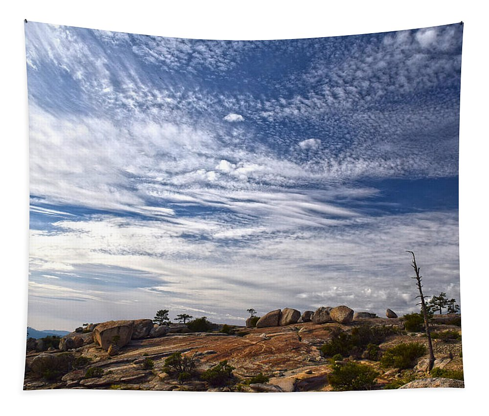 Bald Rock Dome Tapestry featuring the photograph Bald Rock Glacial Erratics by Frank Wilson