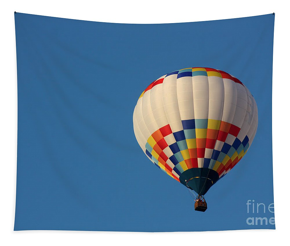 Hot Air Balloon Tapestry featuring the photograph Balloon-6954 by Gary Gingrich Galleries