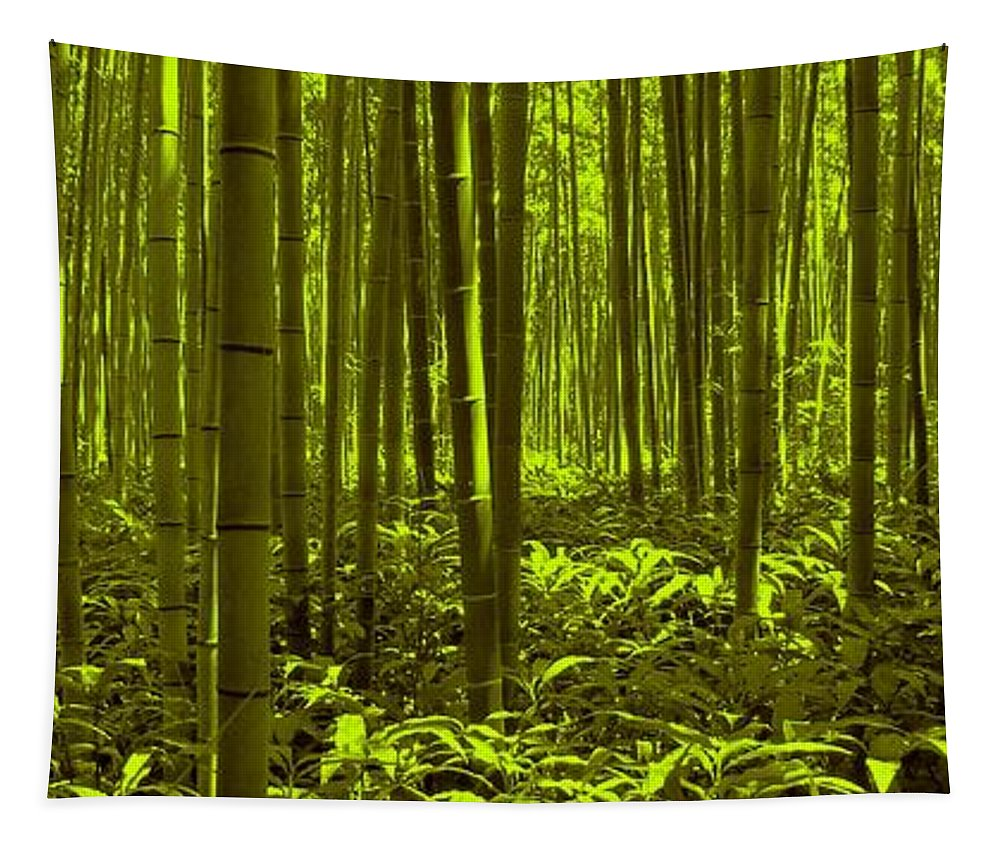 Bamboo Tapestry featuring the photograph Bamboo Forest Twilight by David Dehner