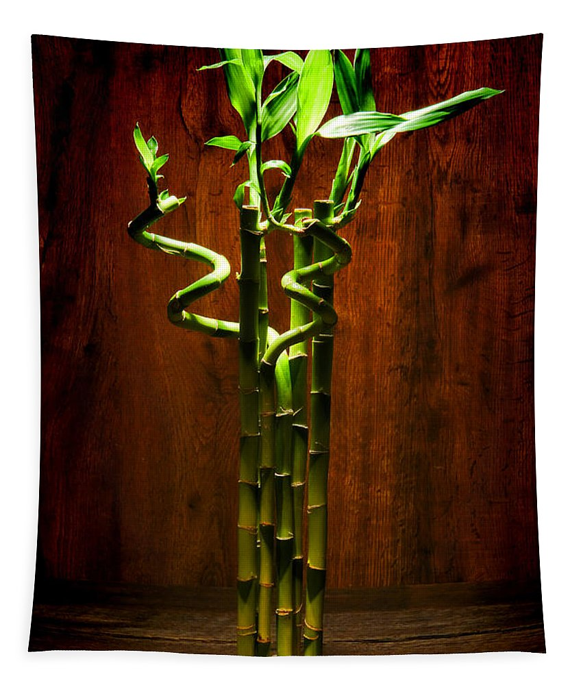 Lucky Tapestry featuring the photograph Bambooesque by Olivier Le Queinec