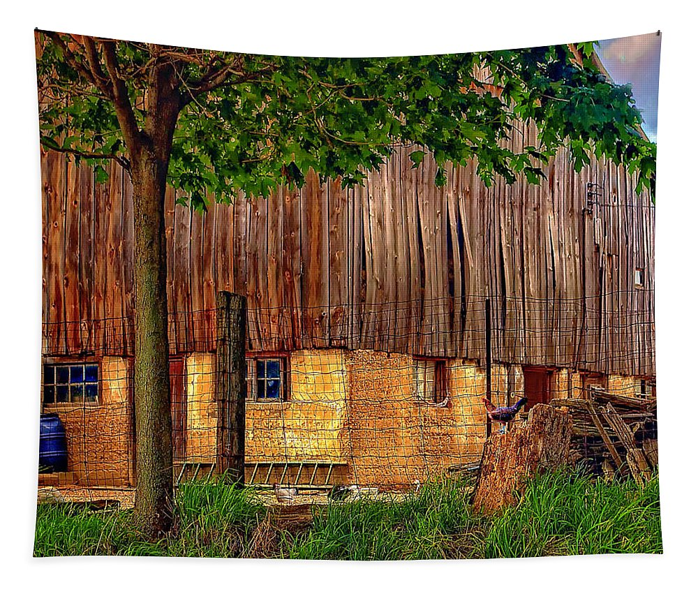 Barn Tapestry featuring the photograph Barnyard by Steve Harrington