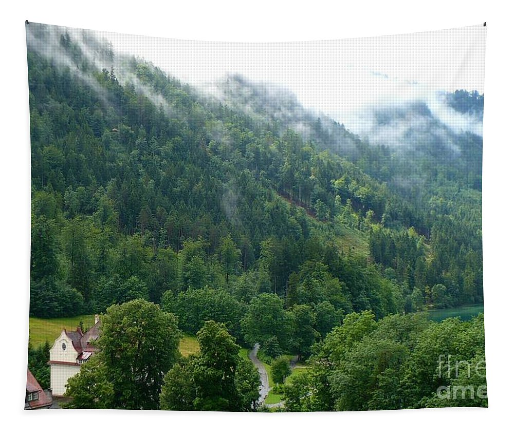 Germany Tapestry featuring the photograph Bavarian Mountain Slope With Mist by Carol Groenen