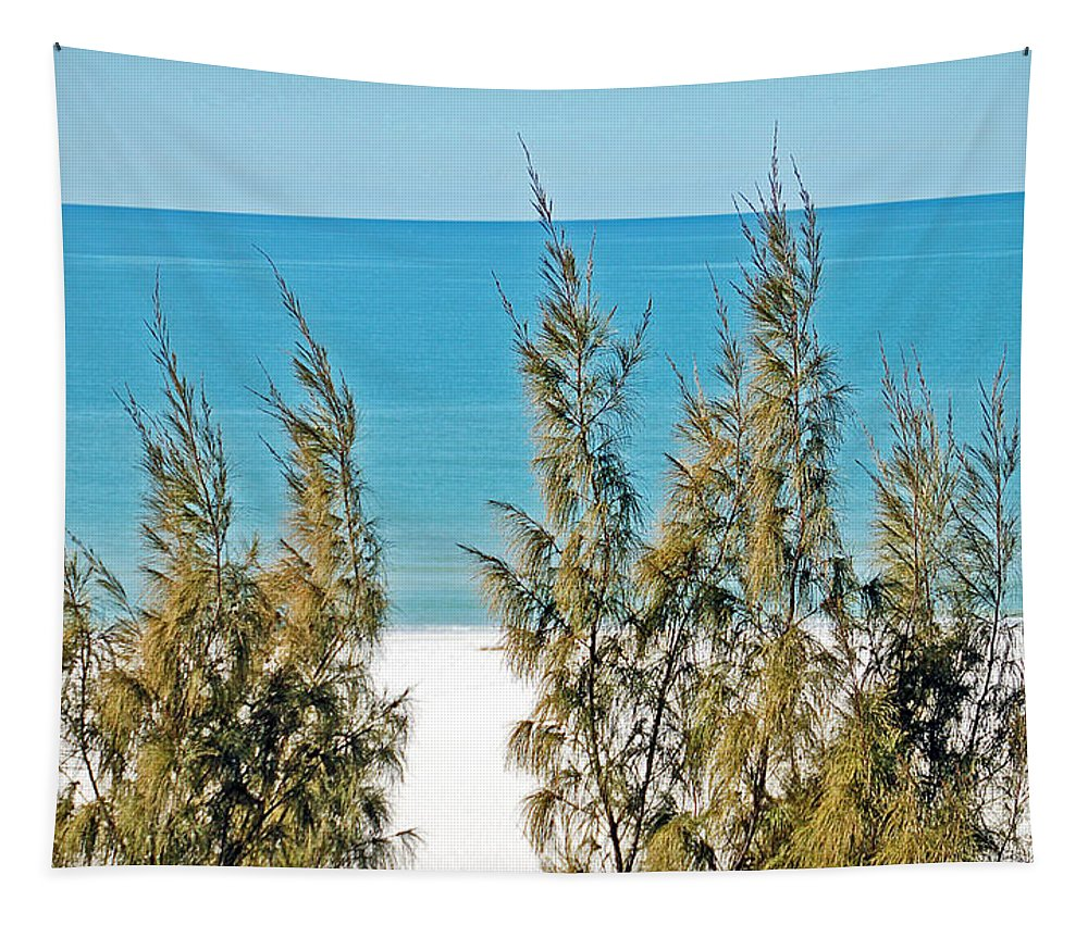 Florida Tapestry featuring the photograph Beach Front View by Aimee L Maher ALM GALLERY