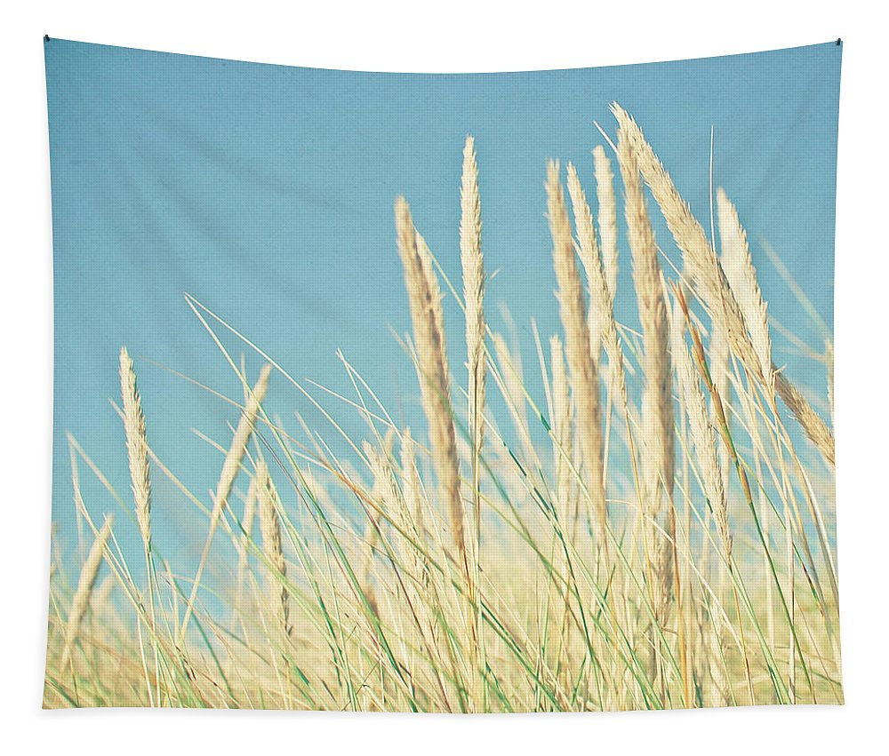 Beach Photograph Tapestry featuring the photograph Beach Grass by Cassia Beck