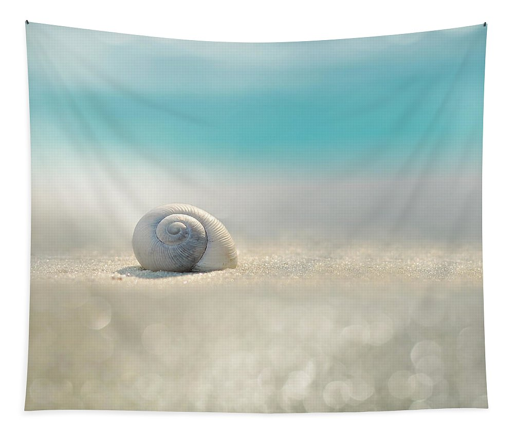 Beach Tapestry featuring the photograph Beach House by Laura Fasulo