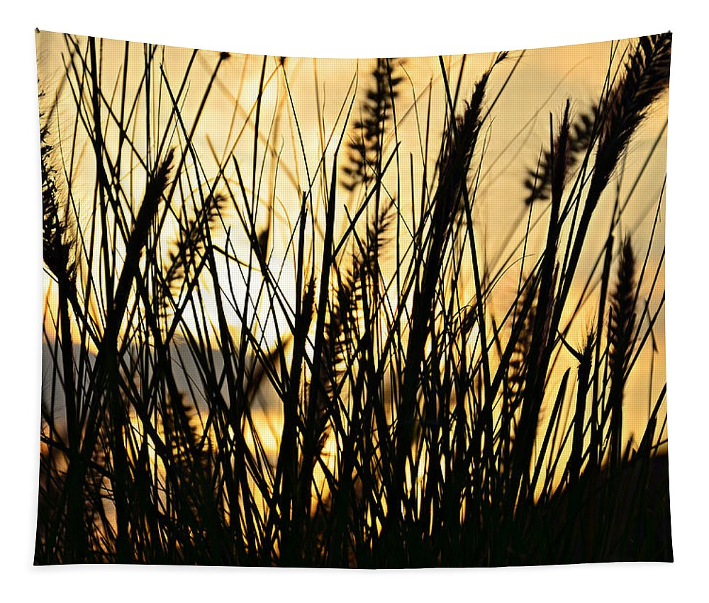Beach Tapestry featuring the photograph Beach Rise by Laura Fasulo