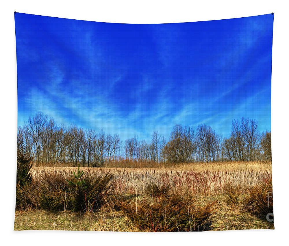 Hdr Tapestry featuring the photograph Beatific Day... by Nina Stavlund