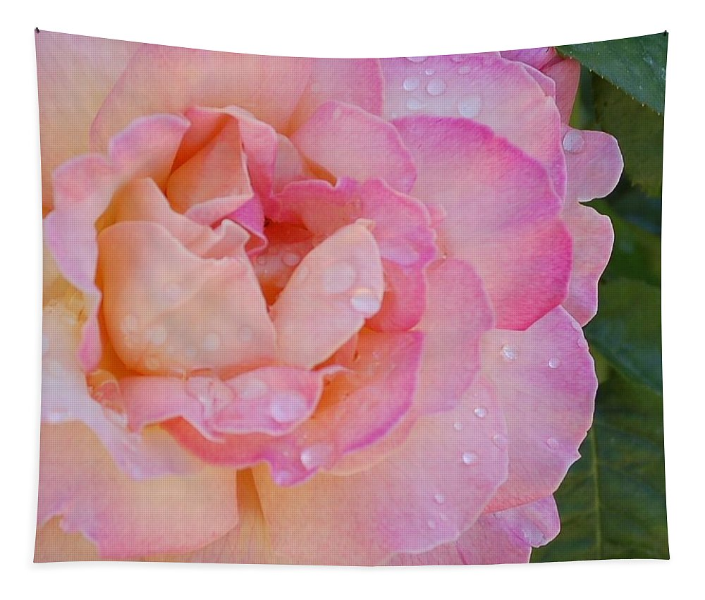 Linda Brody Tapestry featuring the photograph Beautiful Rose by Linda Brody