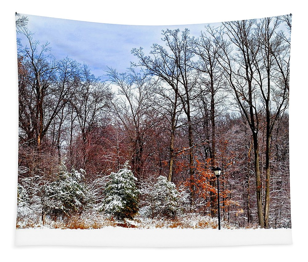 Snow Tapestry featuring the photograph Beautiful Scenery by Frozen in Time Fine Art Photography