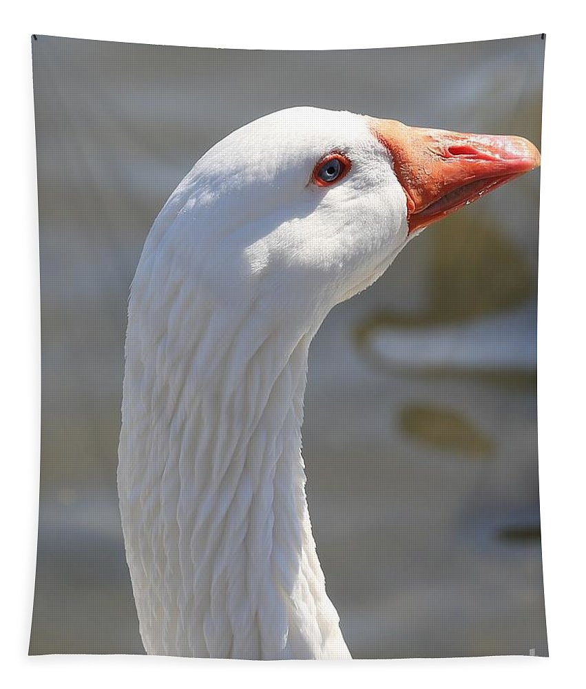 Goose Tapestry featuring the photograph Beautiful White Goose by Carol Groenen