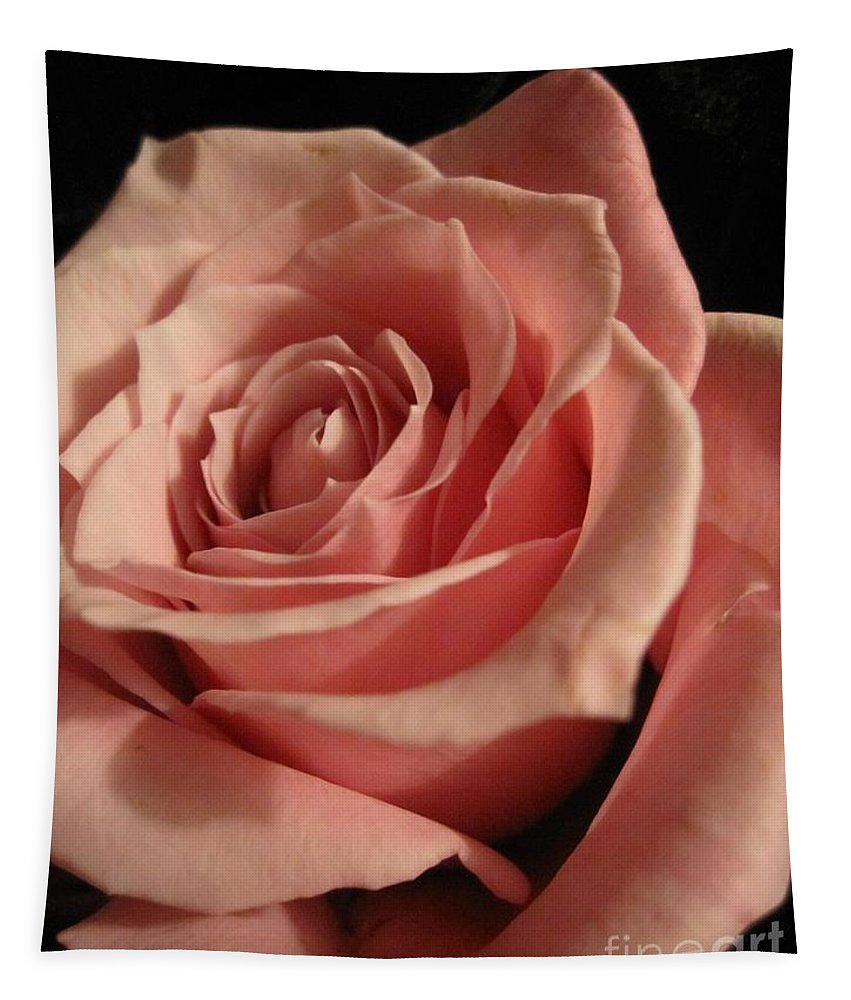 Floral Tapestry featuring the photograph Beautiful Peach Rose by Tara Shalton