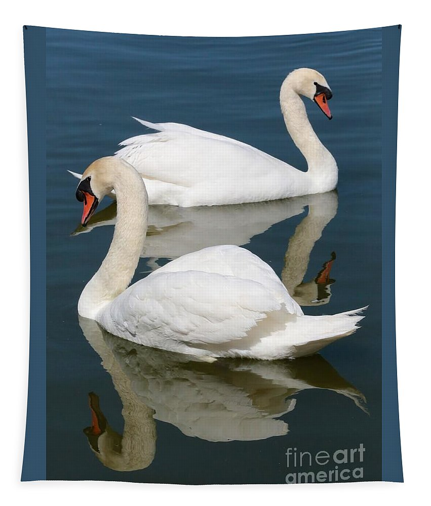 Swan Tapestry featuring the photograph Beautiful Swan Pair by Carol Groenen
