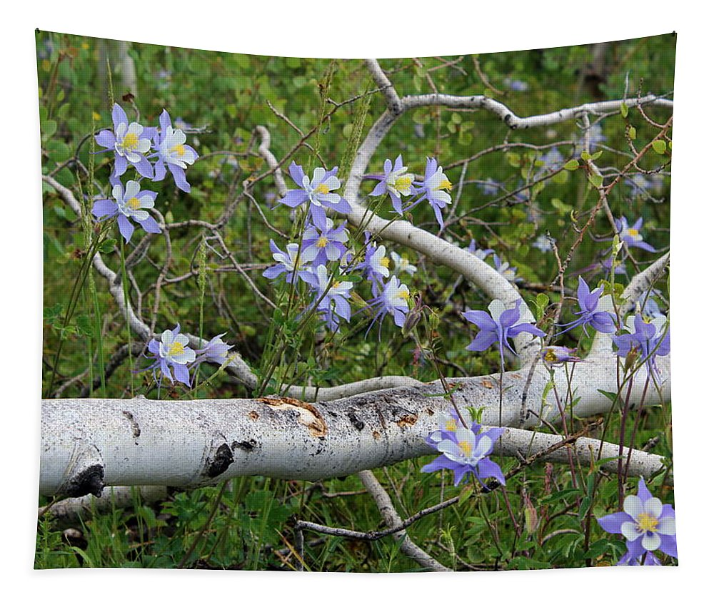 Wildflowers Tapestry featuring the photograph Beauty In The Wild by Fiona Kennard