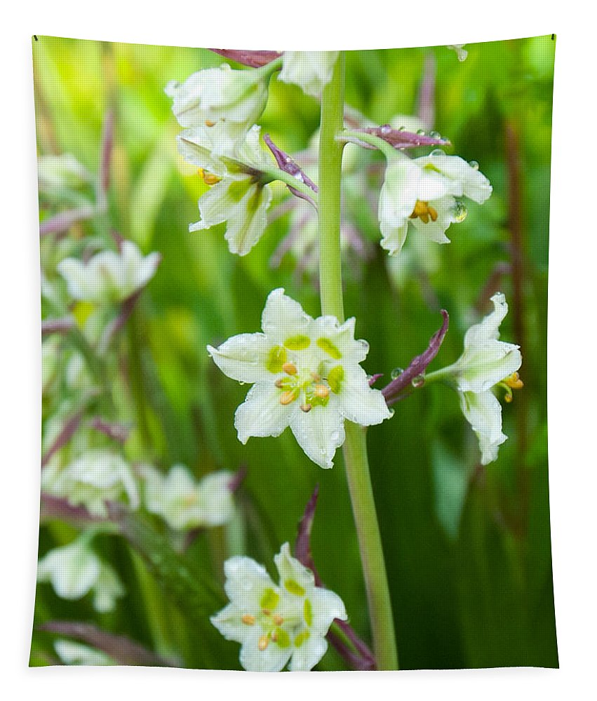 Death Camas Tapestry featuring the photograph Beauty Of The Death Camas Flower by Cascade Colors