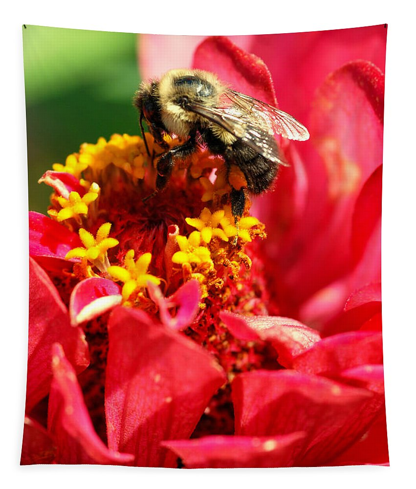 Zinnia Tapestry featuring the photograph Bee On A Zinnia Flower by Optical Playground By MP Ray