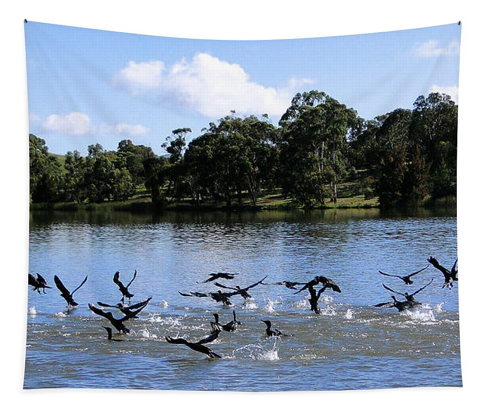 Lake Tapestry featuring the photograph Belconnen Lake by Ben Yassa