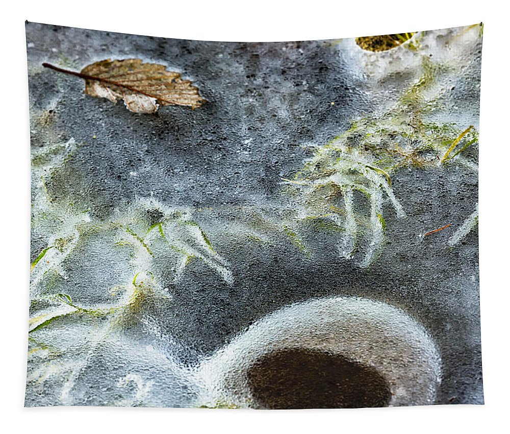 Ice Tapestry featuring the photograph Beneath The Ice by Belinda Greb