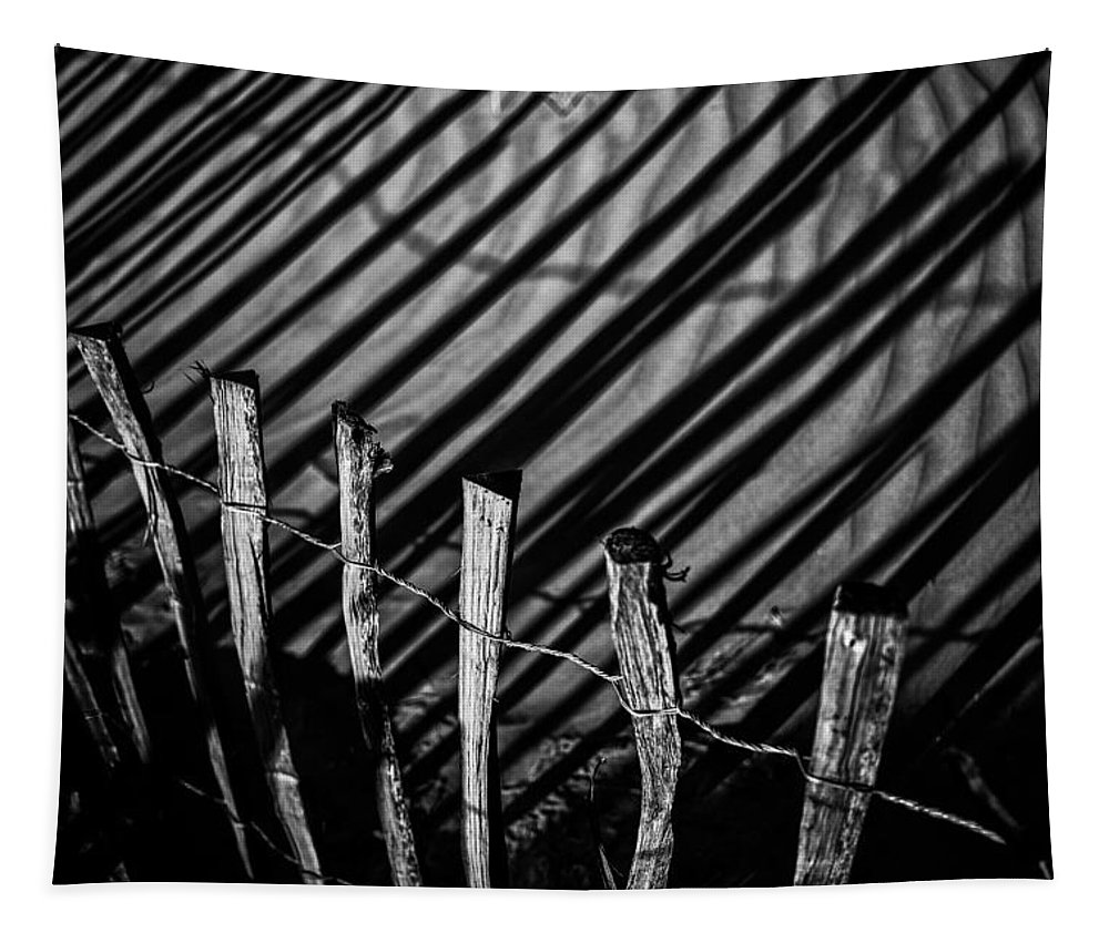 Benone Tapestry featuring the photograph Benone - Shadow Fencing by Nigel R Bell