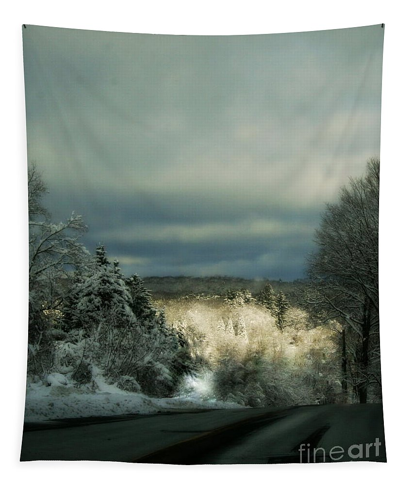 Art Tapestry featuring the photograph Berkshire Winter 2 by Linda Galok
