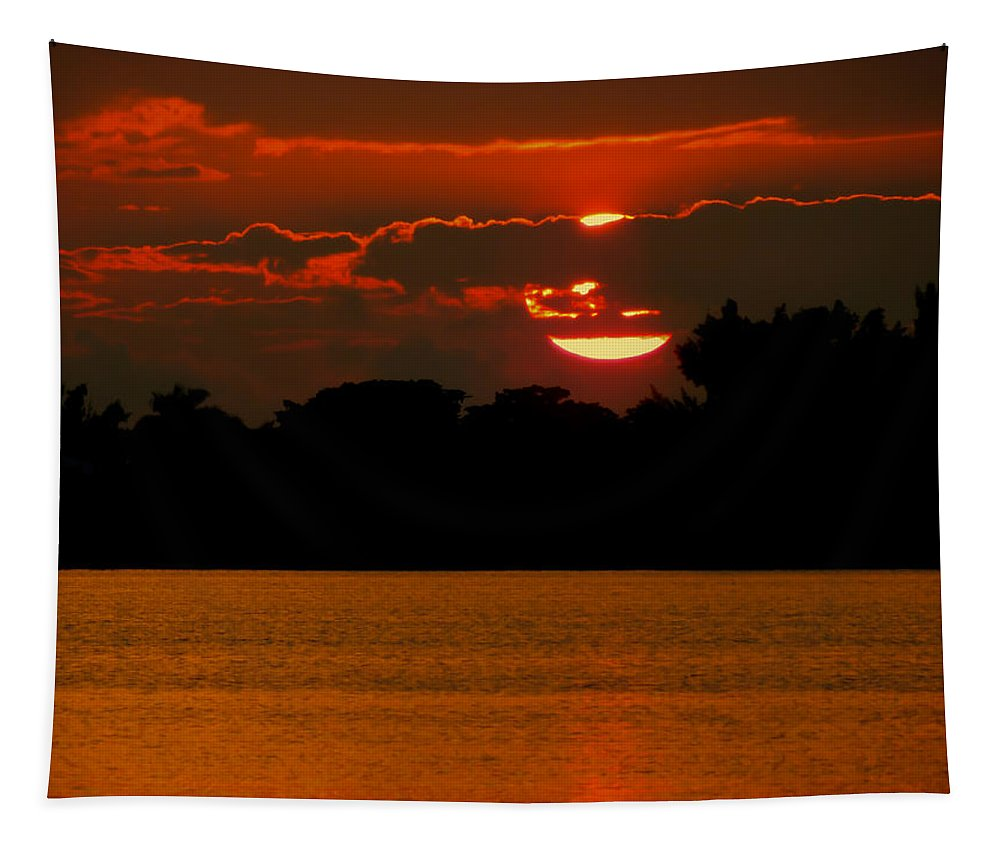 Orange Tapestry featuring the photograph Big Orange by Karen Wiles