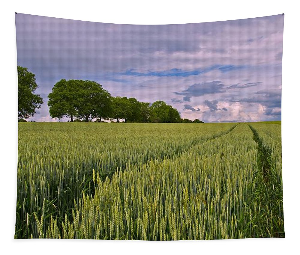 Wheat Tapestry featuring the photograph Big Sky Montana Wheat Field by Movie Poster Prints