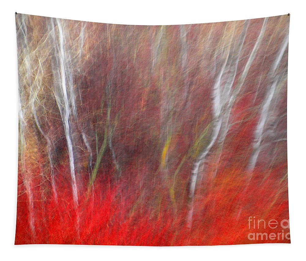 Blur Tapestry featuring the photograph Birch Trees Abstract by Tara Turner