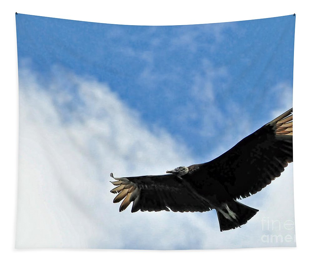 Paul Ward Tapestry featuring the photograph Bird The Black Vulture by Paul Ward