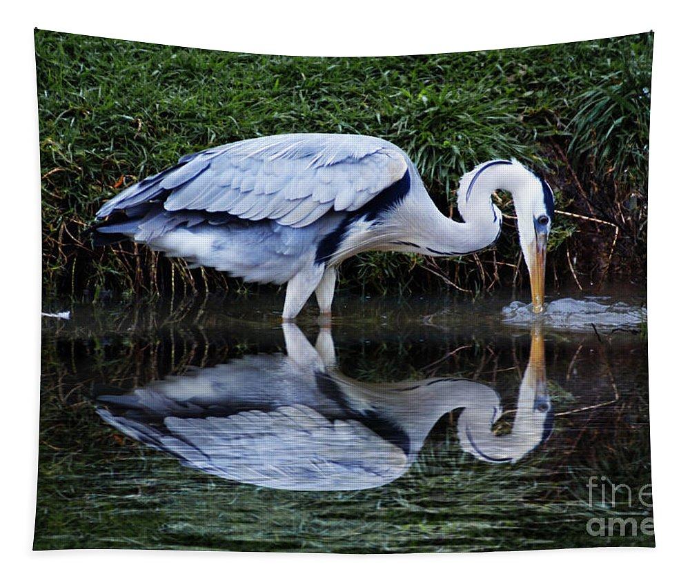 Birds Tapestry featuring the photograph Birds 20 by Ben Yassa