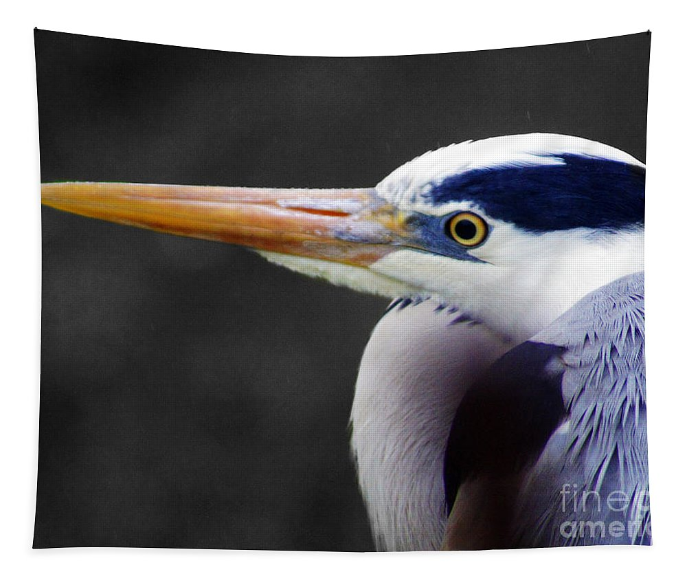 Birds Tapestry featuring the photograph Birds 21 by Ben Yassa
