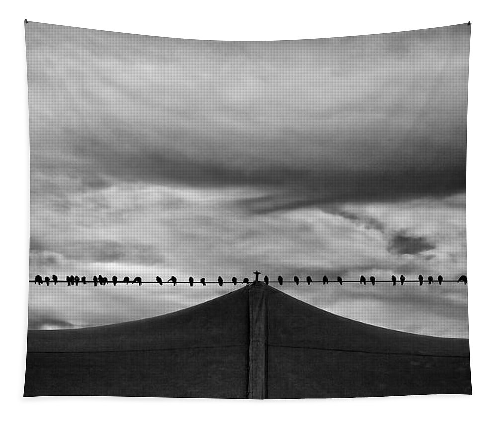 Animal Tapestry featuring the photograph Birds by Bob Orsillo