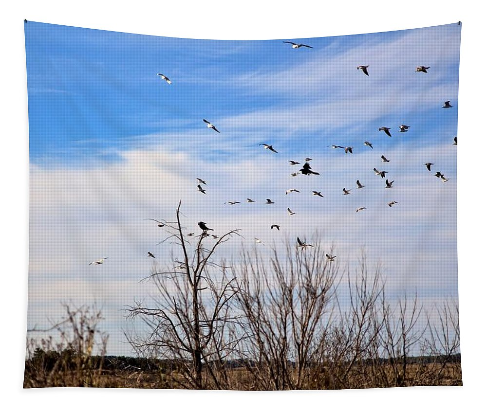 Birds Tapestry featuring the photograph Birds by Robert McCulloch