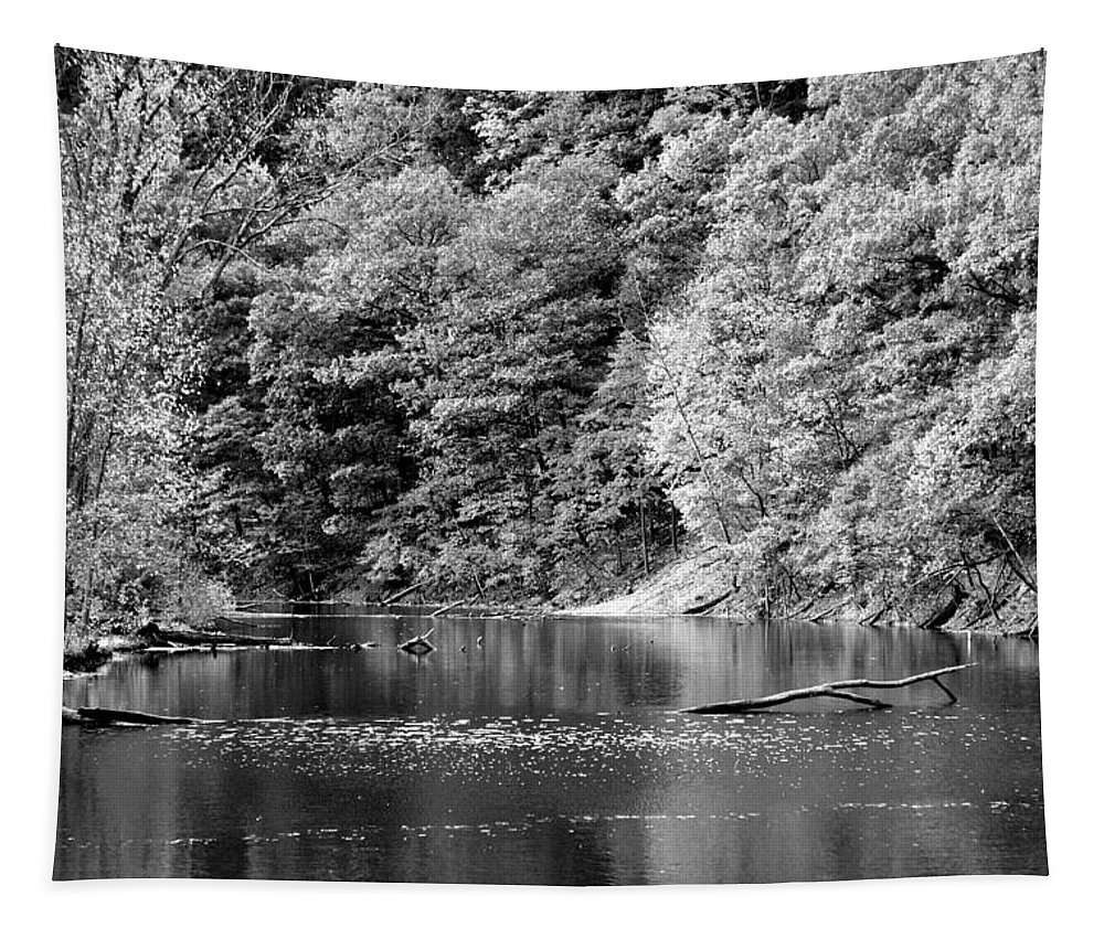 Landscape Tapestry featuring the photograph Black And White Landscape by Frozen in Time Fine Art Photography