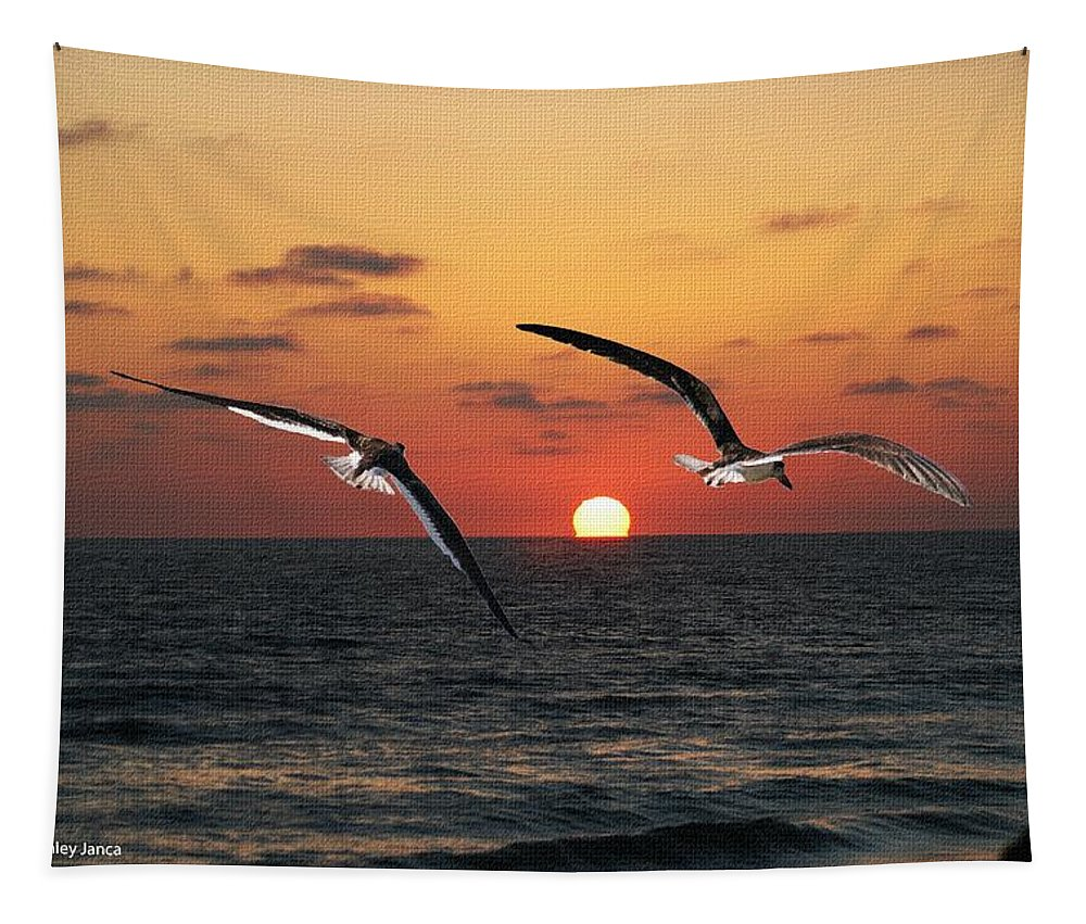 Black Skimmers Tapestry featuring the photograph Black Skimmers At Sunset by Tom Janca