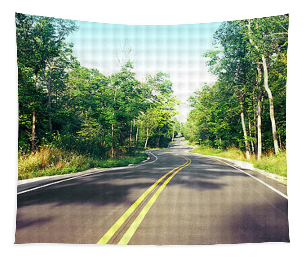 Photography Tapestry featuring the photograph Blacktop Asphalt Curving Highway, Route by Panoramic Images