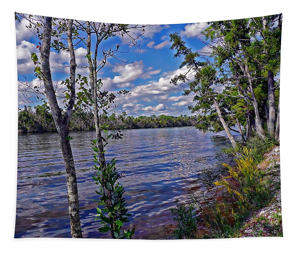 Milton Tapestry featuring the photograph Blackwater River by Anthony Dezenzio