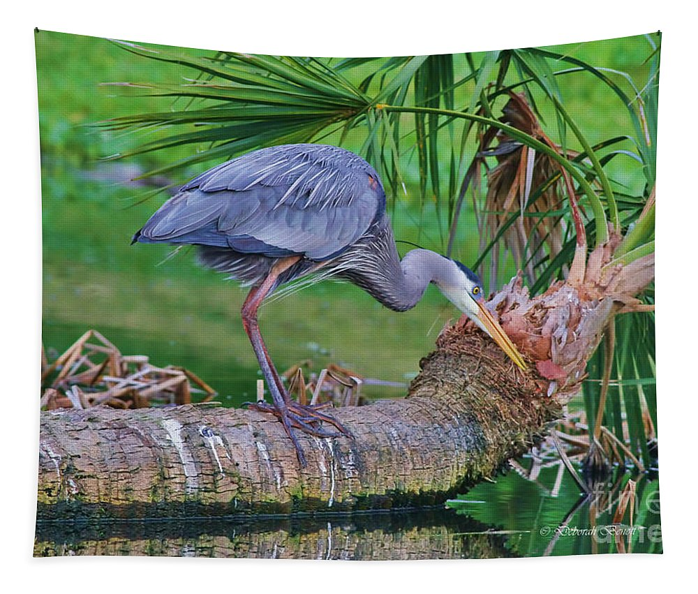 Blue Heron Tapestry featuring the photograph Blue At Dunlawton by Deborah Benoit