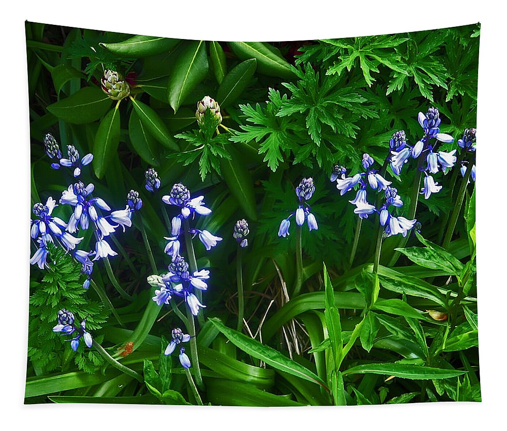 Flower Tapestry featuring the photograph Blue Bells by Aimee L Maher ALM GALLERY
