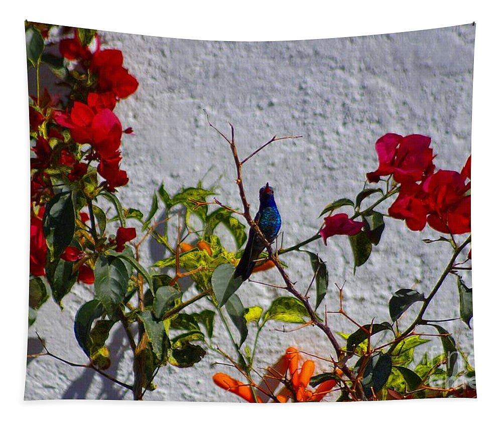 John+kolenberg Tapestry featuring the photograph Blue Hummingbird by John Kolenberg