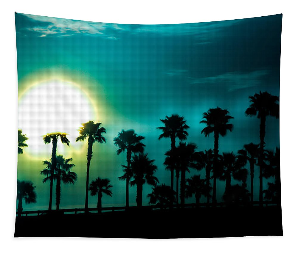 Blue Moon Tapestry featuring the photograph Blue Moon Rising by Karen Wiles