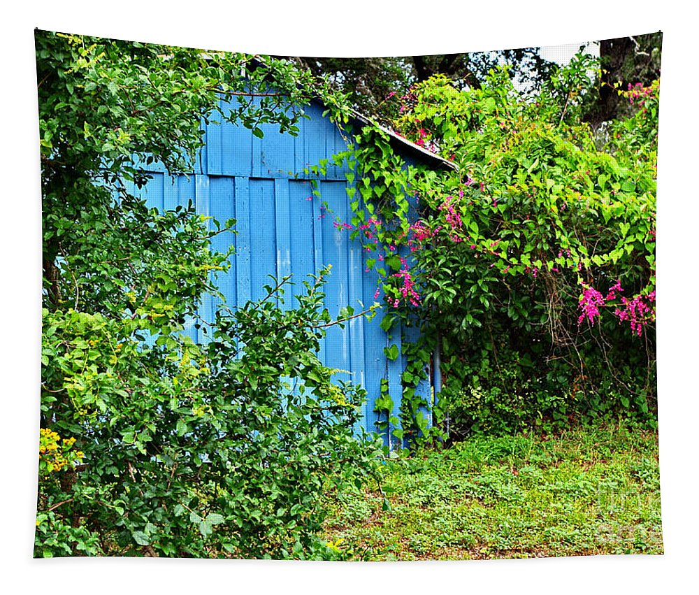 Blue Shed Tapestry featuring the photograph Blue Shed II by Gary Richards