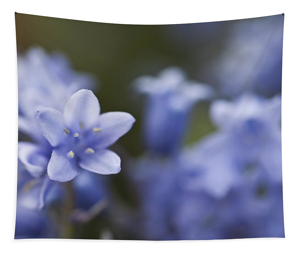 Bluebell Tapestry featuring the photograph Bluebells 3 by Steve Purnell