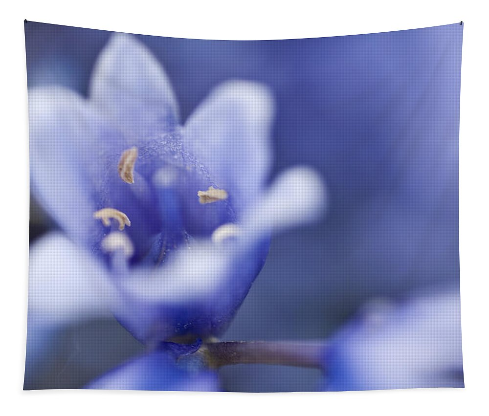 Bluebell Tapestry featuring the photograph Bluebells 5 by Steve Purnell