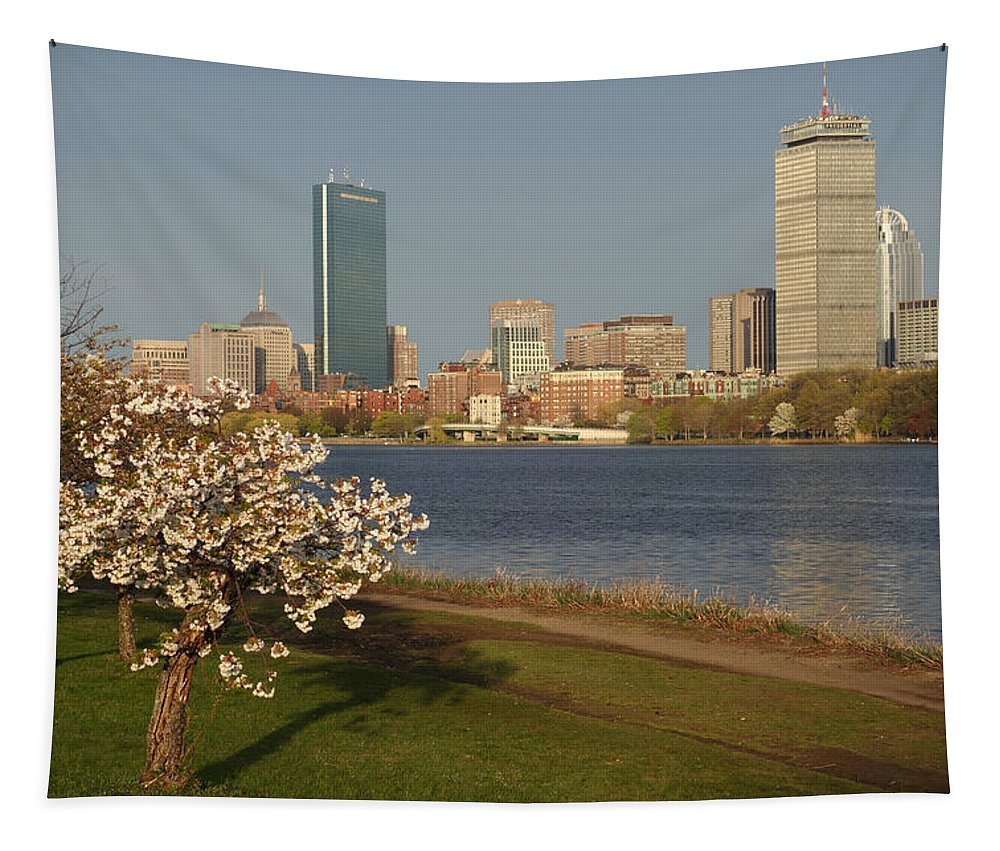 Boston Tapestry featuring the photograph Boston Charles River On A Spring Day by Toby McGuire